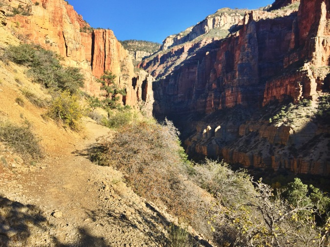 Ascending the canyon walls to the North Rim, around mile 17.